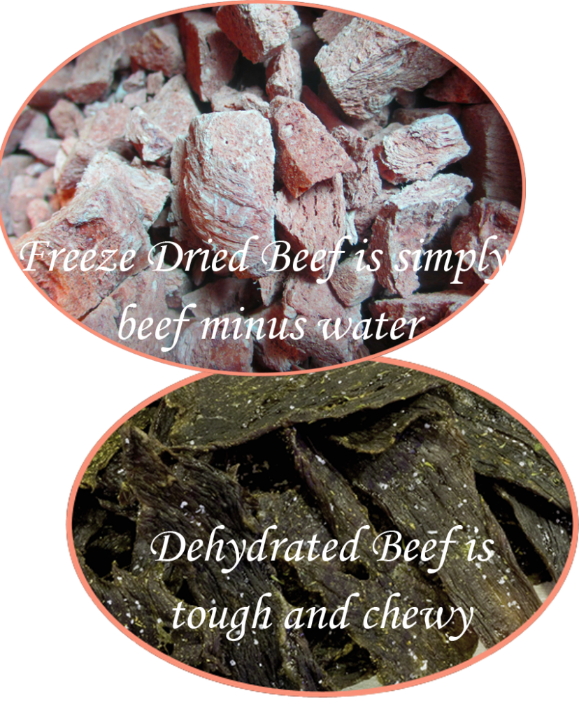 Freeze Dried vs Dehydrated Beef