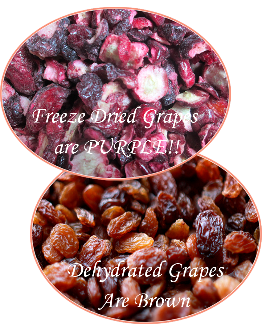 Freeze Dried Vs Dehydrated Foods Your Own Home Store