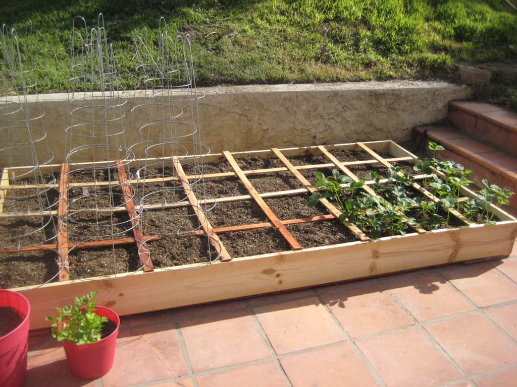 The Garden is started!