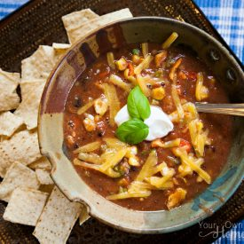 Creamy Enchilada Soup with Chips