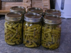 fresh canned green beans