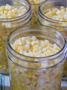 Corn ready for canning