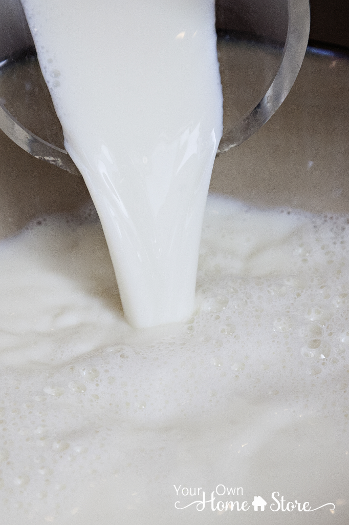 All you need to know about powdered milk. It isn't so scary after all!