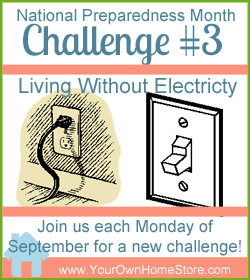 National Preparedness Month Challenge #3: No Electricity