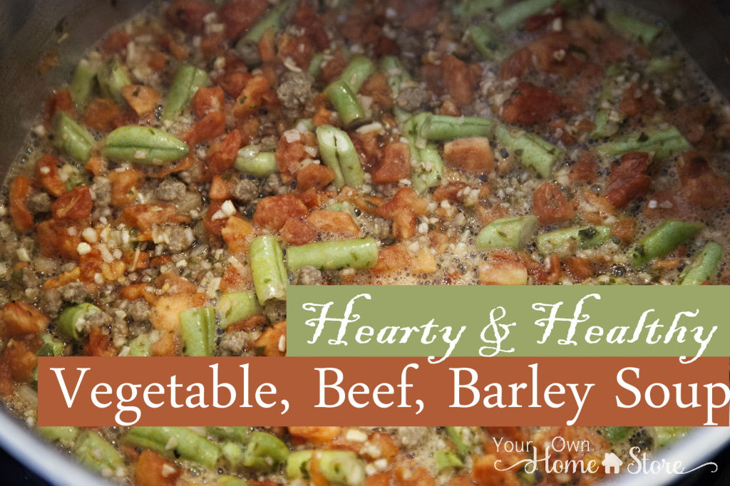Healthy and Hearty Vegetable Beef Barley Soup - Simple Family Preparedness
