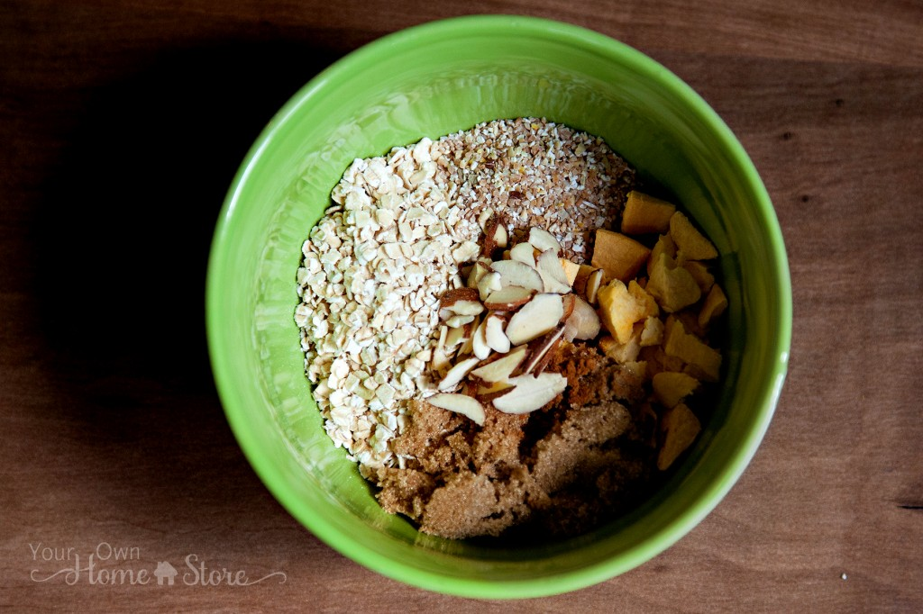 Homemade Oatmeal ingredients in bowl from Simple Family Preparedness