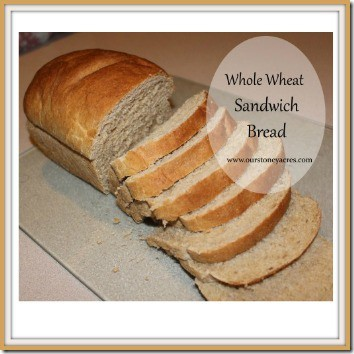 Whole Wheat Sandwhich Bread