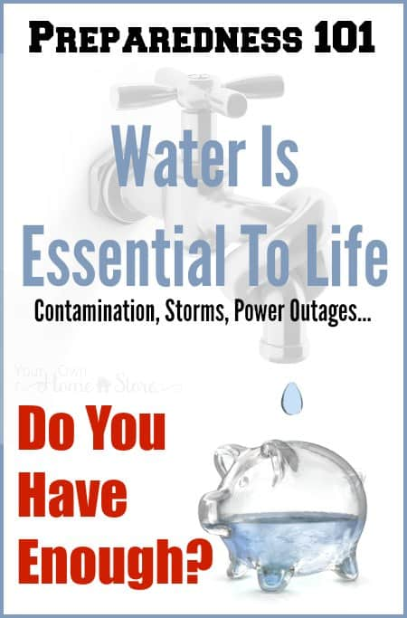 Water is essential to life and yet most if not all of us will have to live without running water at some point during our lives. Come find out how to store and purify it! http://simplefamilypreparedness.com/water-storage-and-purification/