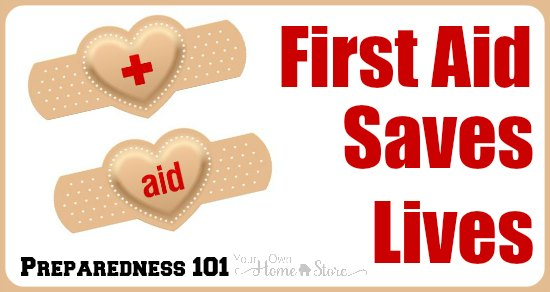 photo relating to First Aid Cards Printable known as Prep 101 Thirty day period #3: 1st Assist Will save Life Basic Loved ones
