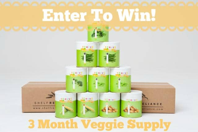 3 Month Veggie Supply Giveaway: E-Prep 101 Course July 1st – July 31st