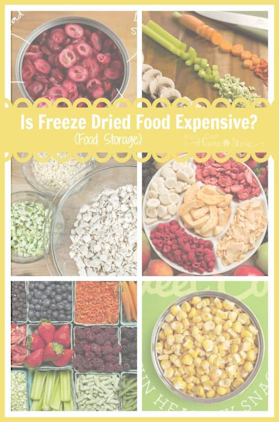 Freeze dried food is the healthiest, longest lasting option for food storage, but is it worth the money? Is it really as expensive as it seems?