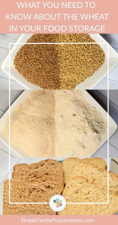 How to use wheat | What you need to know about that wheat in your food storage
