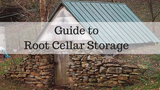 Guide to Root Cellar Storage