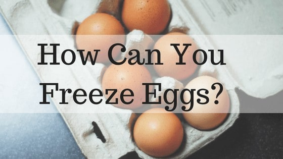 How Can You Freeze Eggs?