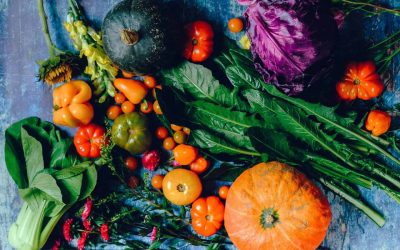Fall Vegetables to Grow in Your Garden
